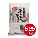 【豊かな甘さ】愛知県産 あいちのかおり 5.25kg