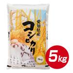 【安全・新鮮・良質】愛知県産 こしひかり 5kg